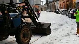 VIDEO Grandinate e piogge torrenziali in Puglia: agricoltura in ginocchio