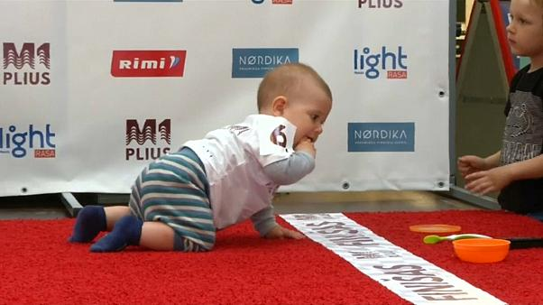 Babies compete in heats on a five-metre carpeted track,