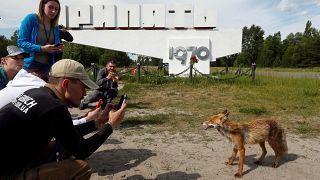 Los turistas invaden Chernóbil tras la emisión de la serie