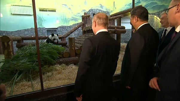 Xi Jinping a Mosca: le intese Cina-Russia