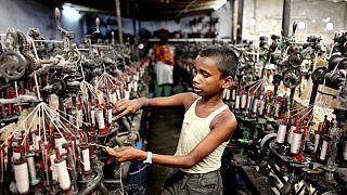 Hollanda tedarik zincirinde çocuk işçiliği olan ürünleri ülkeye sokmayacak