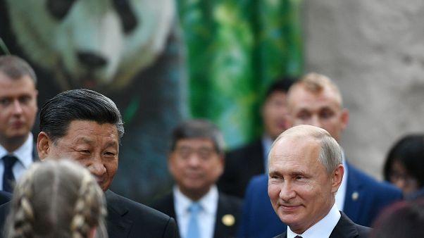 Xi Jinping e Vladimir Putin vão ao Jardim Zoológico