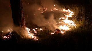 Лесные пожары под Берлином
