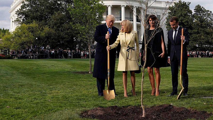 Las dos parejas presidenciales plantando el árbil en abril de 2018