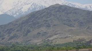 Dschihadismus: Sorge vor Ausbreitung in Afghanistan