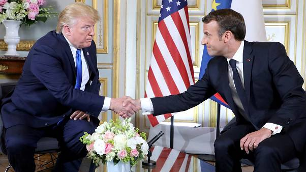 Macron to replace tree symbolising Franco-American friendship