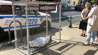 Los 'niños en jaulas' sobrecogen a Nueva York