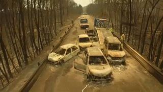 Португалия вспоминает разрушительный пожар в Педроган-Гранди