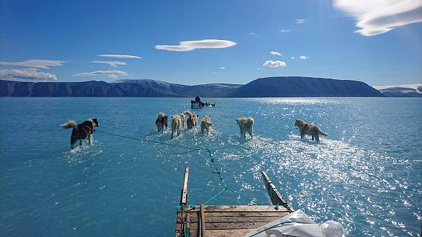 The sled of the scientist Steffen M. Olsen, travelling on a layer of water in Greenland