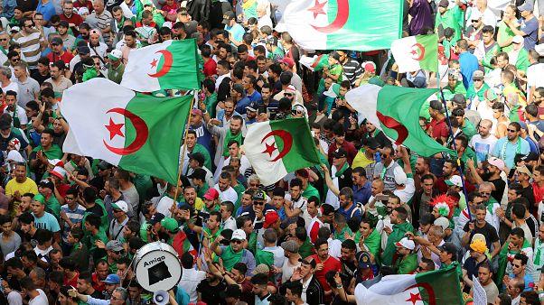 محتجون جزائريون في العاصمة الجزائر يوم 14 يونيو حزيران 2019.