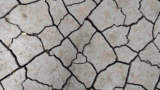 هيئة المسح الجيولوجي ترصد زلزالاً بقوة 6.5 درجة قبالة سواحل اليابان
