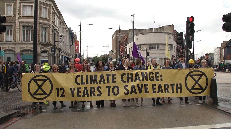قیام علیه انقراض؛ معترضان به آلودگی هوا در لندن به خیابان آمدند