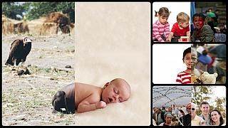 پروژه عکاسی «جهان موازی»؛ رویارویی جنگ و صلح در یک قاب