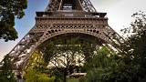 Paris plans 'urban forests' at city landmarks to combat climate change