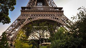 Paris plans 'urban forests' at city landmarks to combat climate change