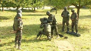 Deutschland: Schluss mit Kleinwaffenausfuhren in Drittländer