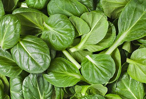 Popeye was right: Spinach chemical should be banned for athletes, German scientists say
