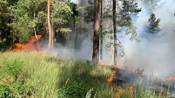 Waldbrand in der Lieberoser Heide (Brandenburg)