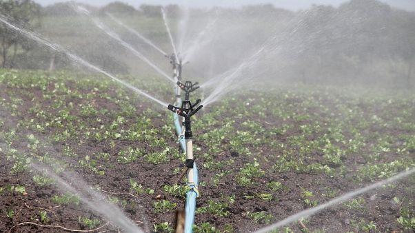 Agricultura deve usar águas residuais urbanas