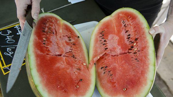 10-15 százalékkal kevesebb görögdinnye teremhet idén