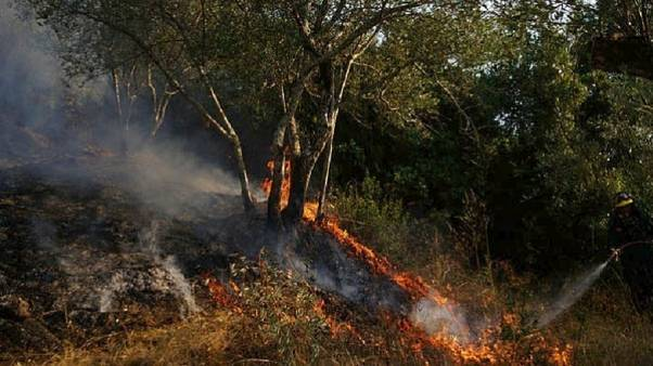 Σε ύφεση η φωτιά στην Κάρυστο