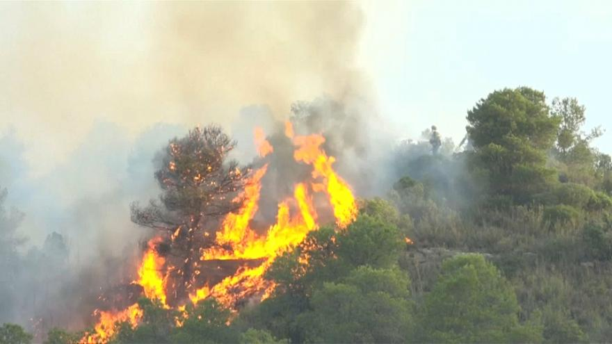 آتشسوزی گسترده در جنگلهای اسپانیا