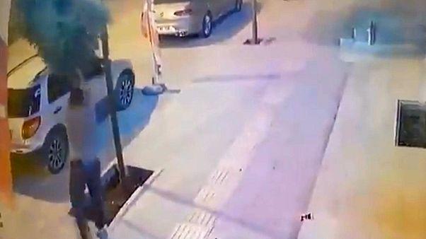Mardin'de kaldırımdaki ağacı kıran kişiye 100 fidan dikme cezası