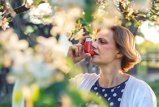Saman nezlesi hastalarına gerçek zamanlı polen tahminleri sağlamak için Avrupa çapında girişim