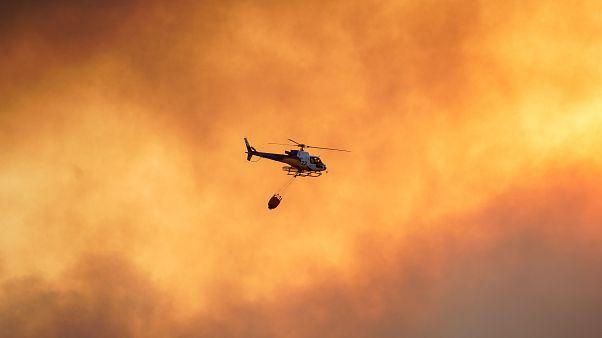 Los incendios arrasan más de 10.000 hectáreas de monte en España