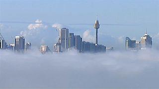 La baie de Sydney noyée sous un épais brouillard