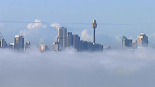 A blanket of fog shrouds Sydney and disrupts flights