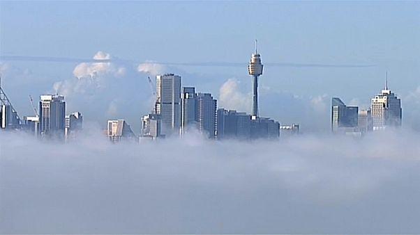 """""""¿Dónde está Sydney? Se la tragó la niebla"""""""