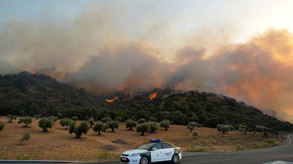 Zerstörung durch Waldbrände in Spanien