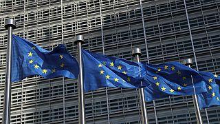 امضای توافقنامه «جاهطلبانه» تجاری میان میان اتحادیه اروپا و ویتنام
