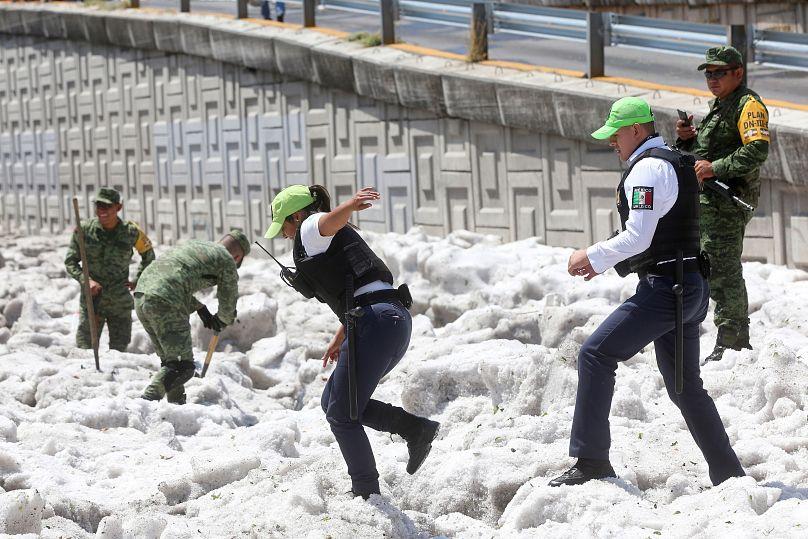 REUTERS/Fernando Carranza
