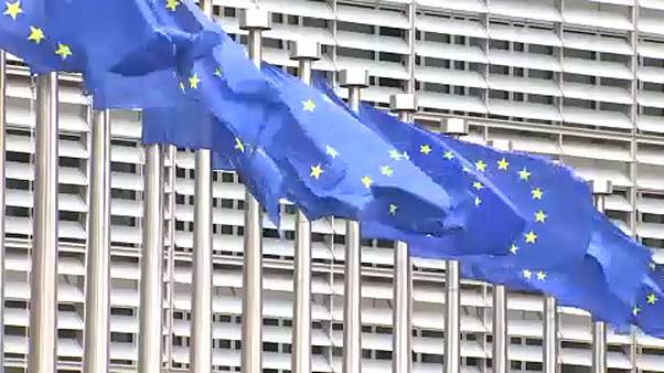 Unemployment rate in EU plunges to 6.3 percent