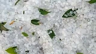 Rare hail carpets eastern Mexican city in 1.5 metres of ice