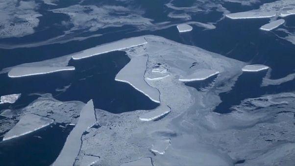 Antarctic sea ice has seen a rapid decline since 2014