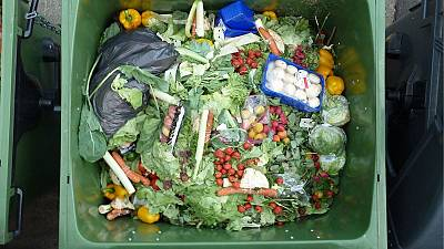 The scale of the food waste problem and a solution