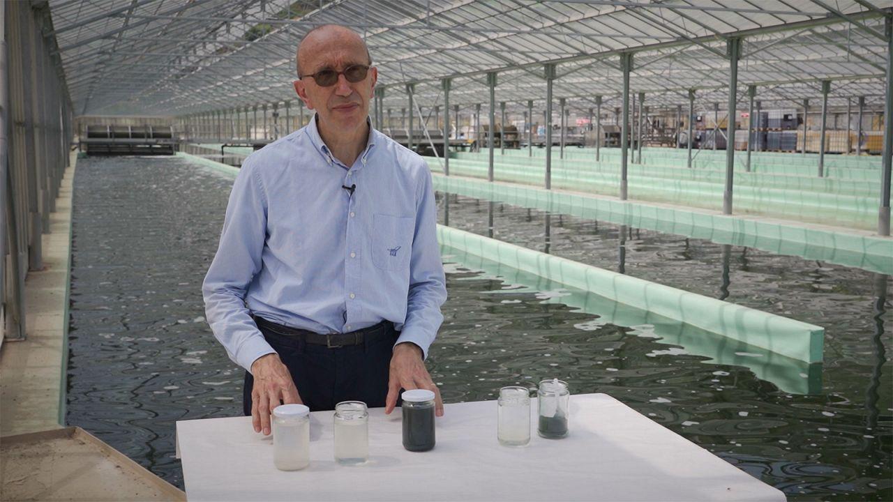 Abwasser - Verwandlung vom Kostenfaktor in einen Wertstoff
