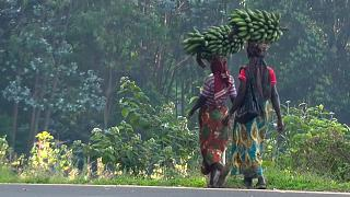 Ruanda 25 anos depois do genocídio