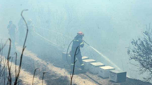 Πυροσβέστης επιχειρεί για την κατάσβεση της πυρκαγιάς που ξέσπασε στην θέση Αυλωνάρι στην Εύβοια