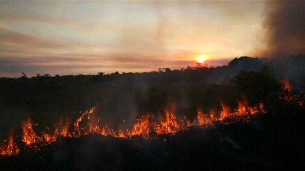 بولسونارو يرد على انتقادات الاتحاد الأوروبي بشأن زيادة نسق تدمير غابات الأمازون