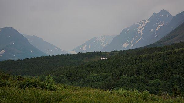 Mountain Valley oscurecido por los incendios el pasado junio