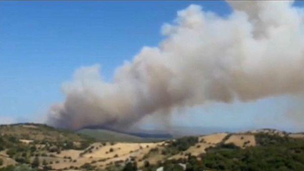 فيديو: إجلاء قرية يونانية بأكملها بسبب انتشار حرائق الغابات