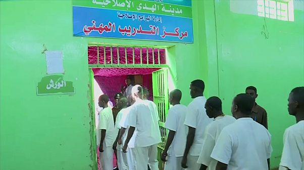المجلس العسكري الانتقالي يعفو عن 235 أسيراً من حركة تحرير السودان