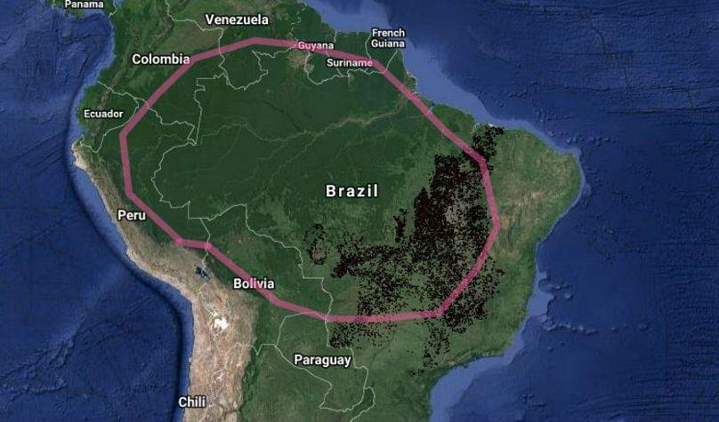 http://terrabrasilis.dpi.inpe.br