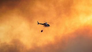 Human activity responsible for 96% of wildfires around Mediterranean basin: WWF