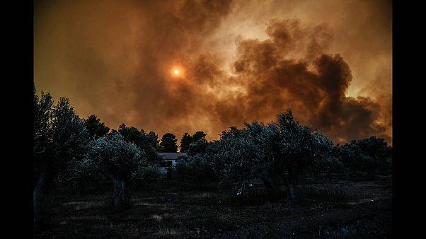 Εύβοια: Σε κατάσταση έκτακτης ανάγκης οι πυρόπληκτες περιοχές