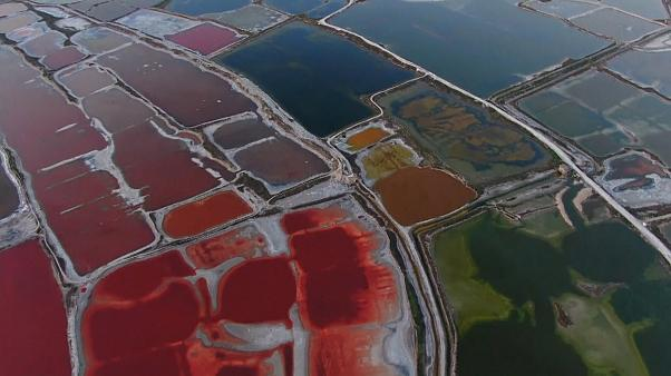 Soaring temperatures see Yuncheng Salt Lake turn into vibrant sea of glowing colours